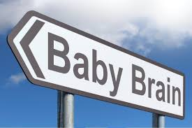 Your Baby's Brain-How the Mind Grows
